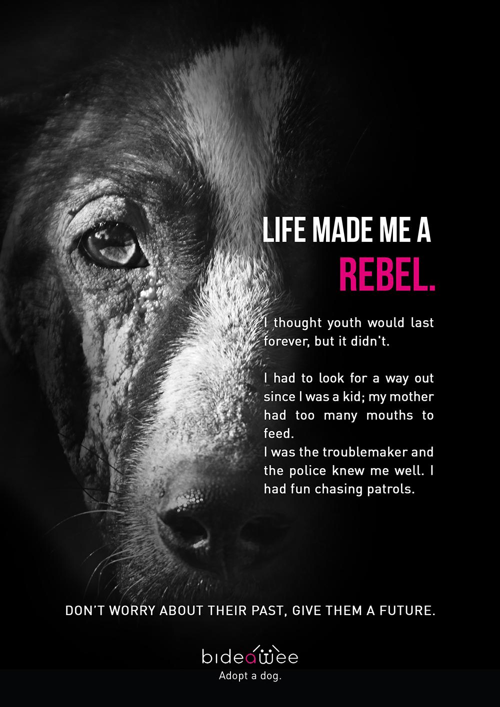 rebel_p